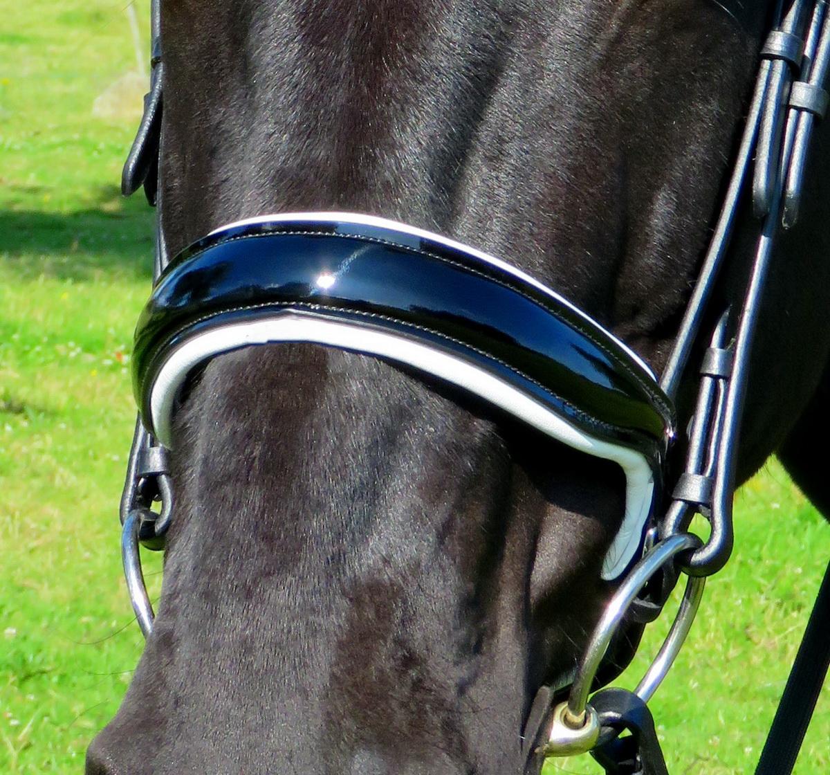 New Black Multiple Sizes Kincade Raised Cavesson Noseband
